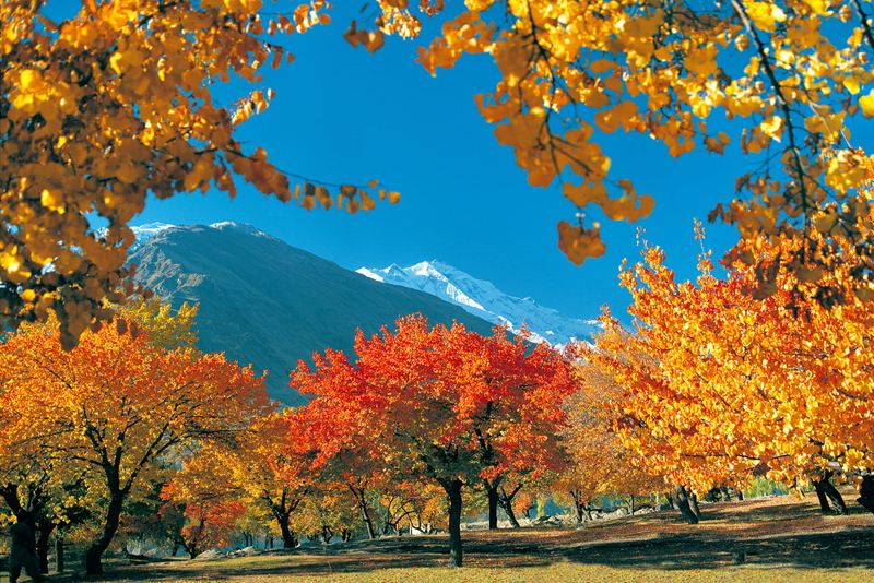 Autumn in Hunza(2)